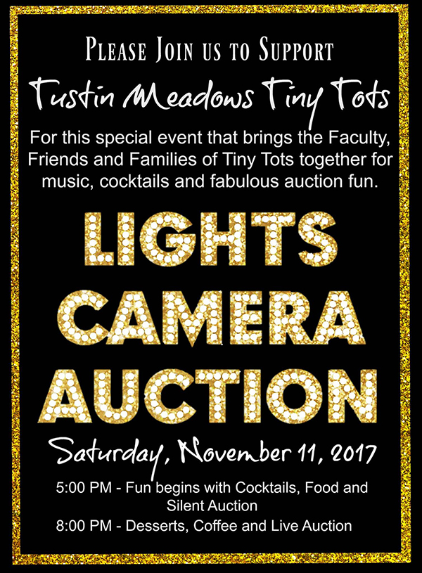 TMTinyTots Silent Auction NOV 11 2017